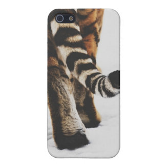 A Tiger Tale iPhone 5 Case