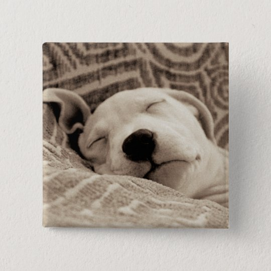 A Tired Dog 15 Cm Square Badge