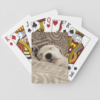 A Tired Dog Deck Of Cards