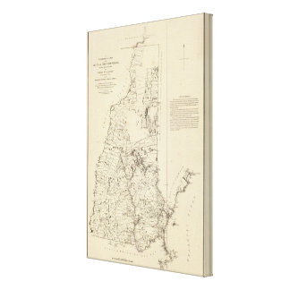A Topographical Map Canvas Print