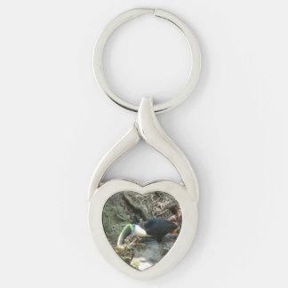 A Toucan Perches on tree roots on the forest floor Silver-Colored Twisted Heart Key Ring