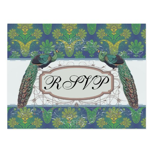 a touch of peacock damask design with peafowl post card