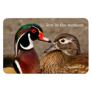 A Touching Moment Between Wood Ducks Rectangular Photo Magnet