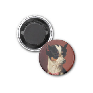 A Toy Pincher Magnet