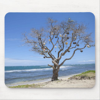 A tree decorated with old buoys on the beach in mouse mat