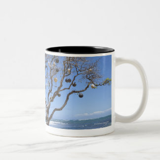 A tree decorated with old buoys on the beach in Two-Tone coffee mug