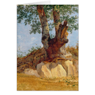 A Tree in Campagna, 1822-23 Card