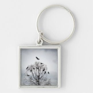 A tree in which many crows have rest key ring