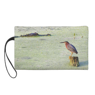 A Tricolor Heron And An Alligator Wristlet