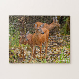 A Trio of Black-Tailed Deer Jigsaw Puzzle