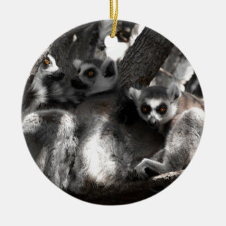 A trio of South African Lemurs Round Ceramic Decoration