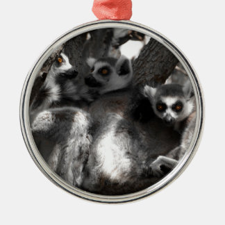 A trio of South African Lemurs Silver-Colored Round Decoration
