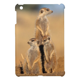 A trio of Suricates sunning at their den Cover For The iPad Mini