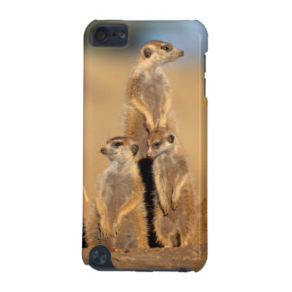A trio of Suricates sunning at their den iPod Touch 5G Cases