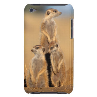 A trio of Suricates sunning at their den iPod Touch Case-Mate Case