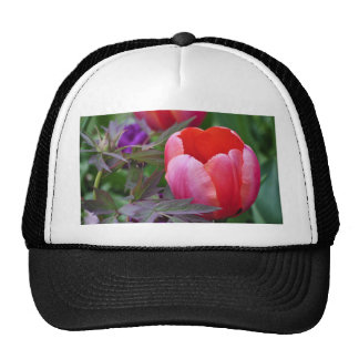A Tulip And Other Leaves II Trucker Hat