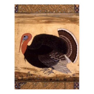 A turkey-cock brought to Jahangir from Goa in 1612 Postcard