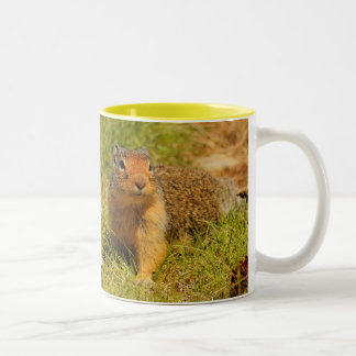 A Twitchy-Nosed Columbian Ground Squirrel Two-Tone Mug