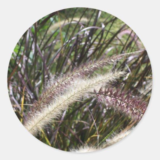 A type of wild grass classic round sticker