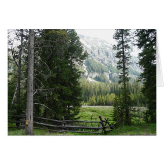 A Valley in Yellowstone National  Park Card
