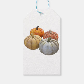 A Variety of Pumpkins Gift Tags
