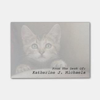 A Very Sweet Tabby Kitten Post-it Notes
