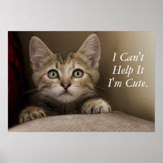 A Very Sweet Tabby Kitten Poster