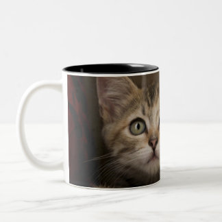 A Very Sweet Tabby Kitten Two-Tone Coffee Mug