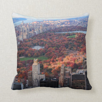 A view from above: Autumn in Central Park 01 Cushion