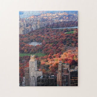 A view from above: Autumn in Central Park 01 Jigsaw Puzzle