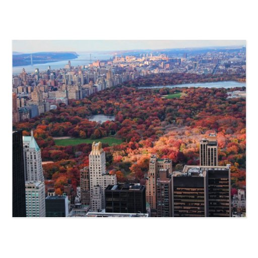 A view from above: Autumn in Central Park 01 Post Cards