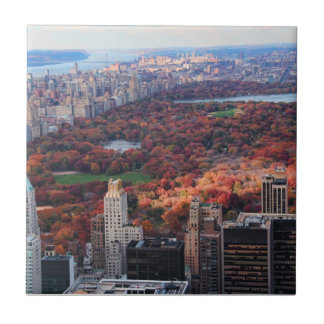 A view from above: Autumn in Central Park 01 Small Square Tile