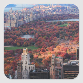 A view from above: Autumn in Central Park 01 Square Sticker