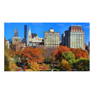 A view from Above: Autumn in Union Square Park NYC Double-Sided Standard Business Cards (Pack Of 100)