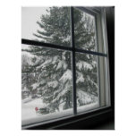 A View from Window of Snow Covered Evergreen Poster