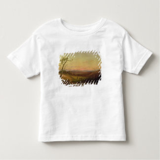 A View of Adelaide at Sunset Toddler T-Shirt