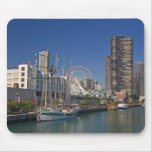 A view of Chicago's Navy Pier 2 Mousepads