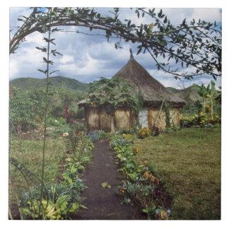 A village in the Highlands, Goroka, Papua New Tile