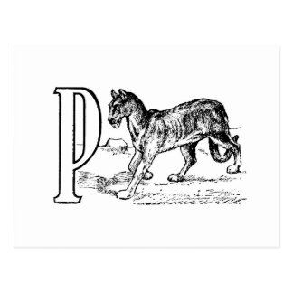 A vintage drawing of the letter P Postcard