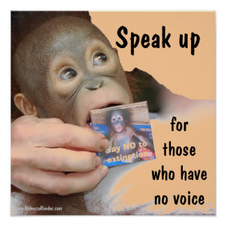 A Voice Speak Up for Wildlife Poster