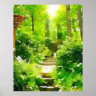 A Walk Among the Ferns Poster