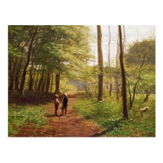 A Walk in the Forest Postcard
