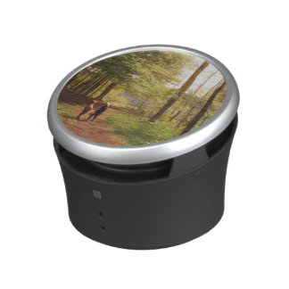 A Walk in the Forest Speaker