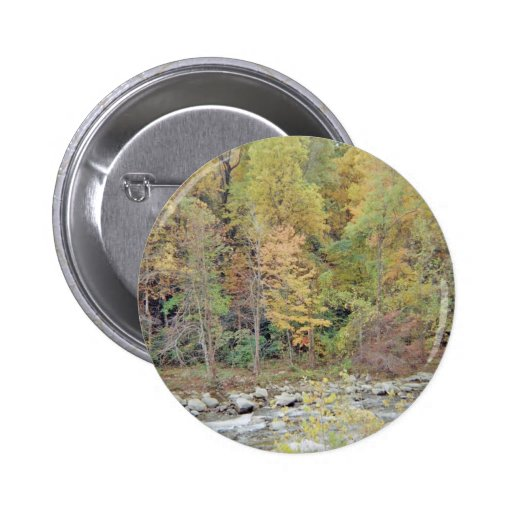 A Walk In The Woods Pinback Buttons