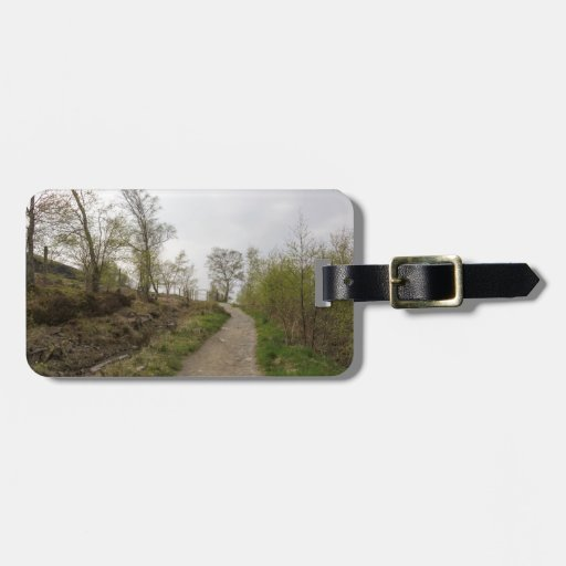 A walk in the woods luggage tag