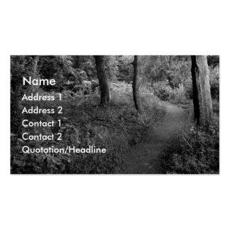 A Walk in the Woods Pack Of Standard Business Cards