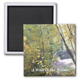 A Walk in the Woods Square Magnet