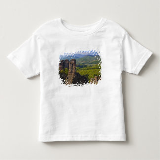A walk throught Belogradchik Castle Ruins 2 Toddler T-Shirt