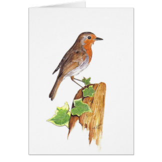 A watchfull Robin, fine art, watercolour Card