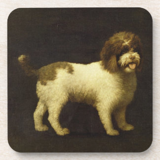A Water Spaniel, 1769 (oil on canvas) Drink Coasters